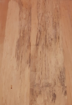 Spalted Hard Maple